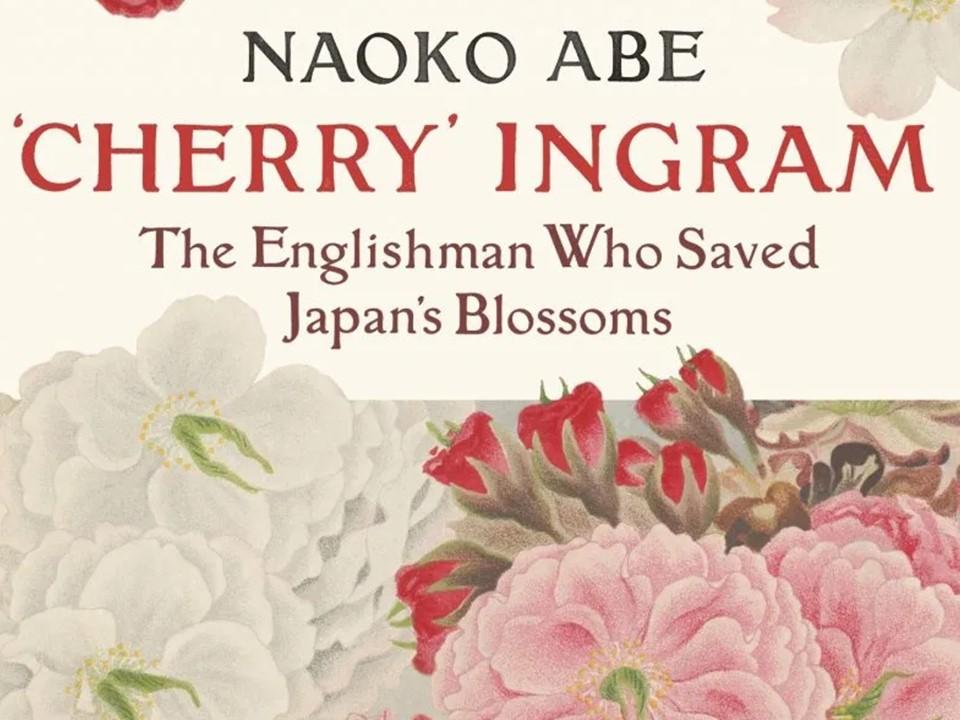 แนะนำหนังสือ The Sakura Obsession เรียนรู้ประวัติศาสตร์ผ่านดอกซากุระ